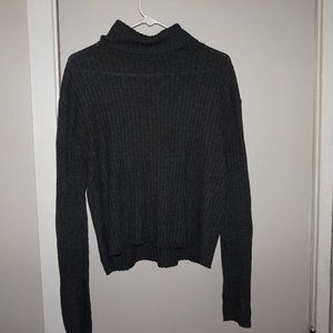 American Eagle Ribbed Turtle Neck